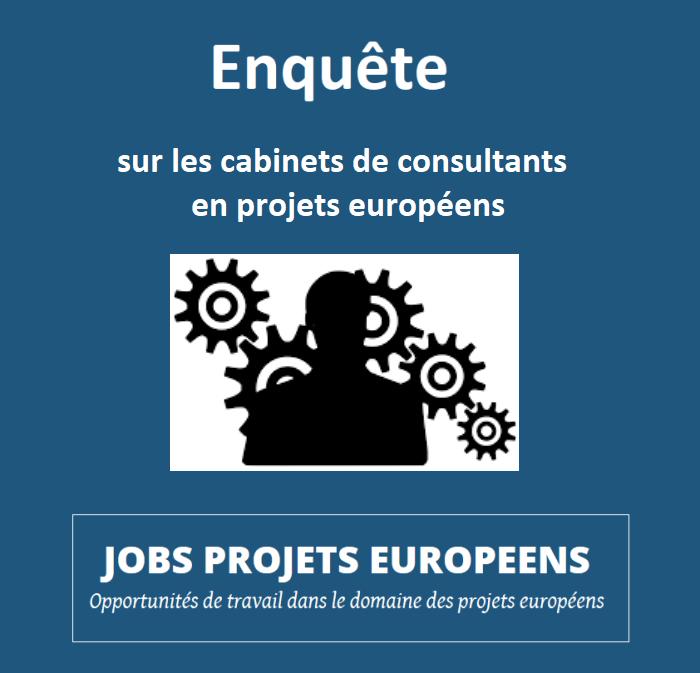 projets-europeens-vincent-arnoux-enquete-consultants