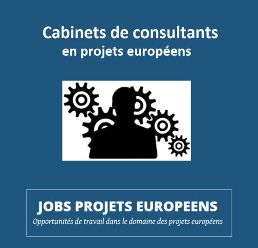 projets-europeens-vincent-arnoux-consultants